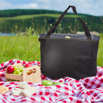 Freezer tote bag on picnic blanket with apples